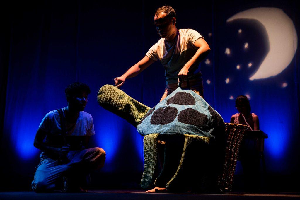 Dicen que las tortugas no sueñan